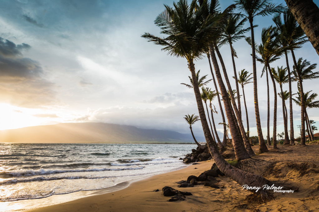 Inclusive Wedding Packages For Maui We Design Your Dream