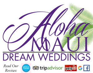 AMDW Weddings Reviews