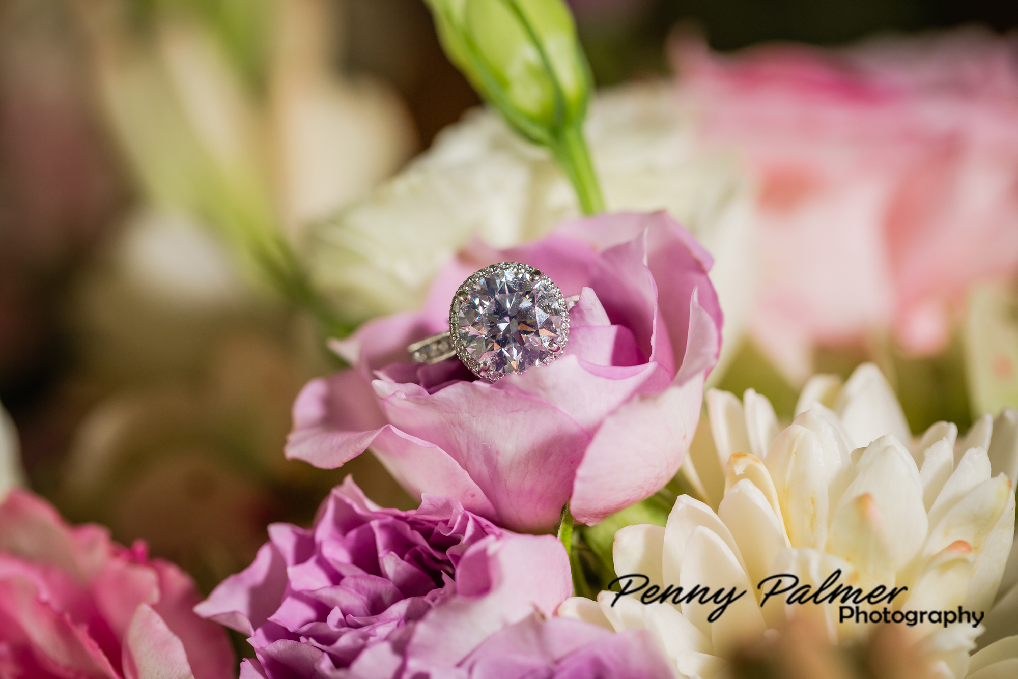 Maui weddings rings