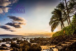 maui wedding beach
