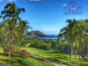 Maui wedding venue view